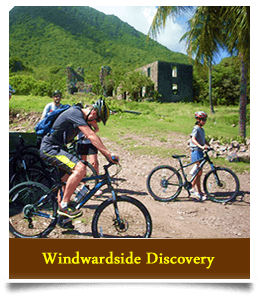 Windward Side Bike Tour